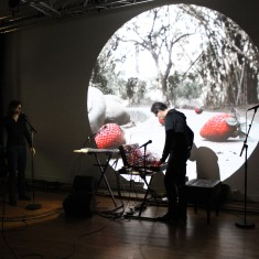 Olivia Rosenthal & Eryck Abecassis – « Macadam Animal trois chapitres (rats, corbeaux, termites) »